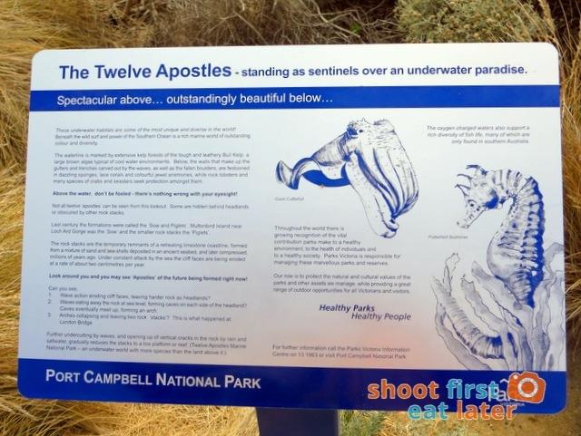 Twelve Apostles-008