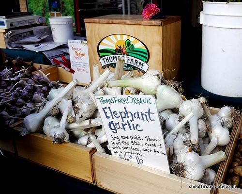 Ferry Plaza Farmers Market -4