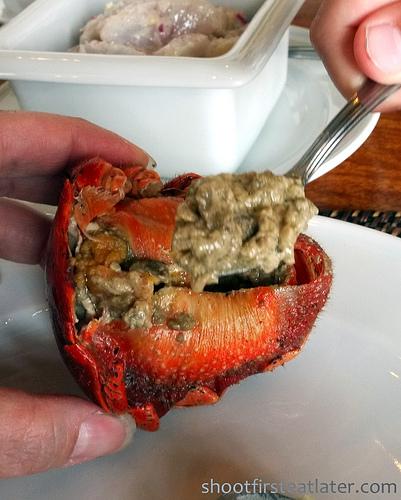 Fundacion Pacita, Batanes- coconut crab-1