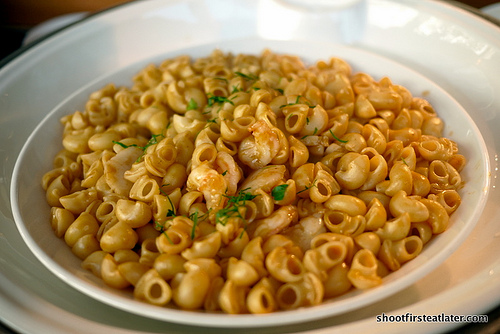 seafood shell pasta w/ lobster sauce
