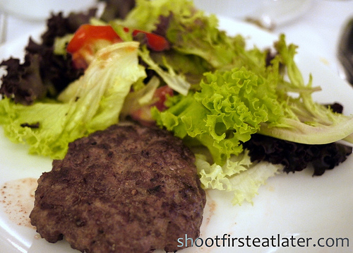 Apartment 1b- beef burger with salad