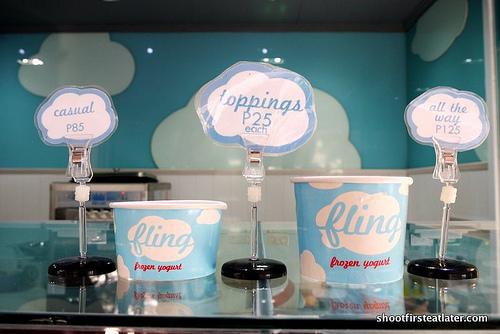 Fling frozen yogurt-6