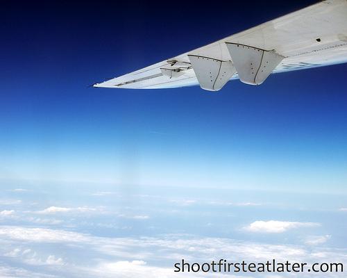 plane's wing