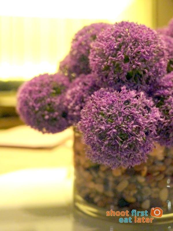 Allium Restaurant - Allium plant