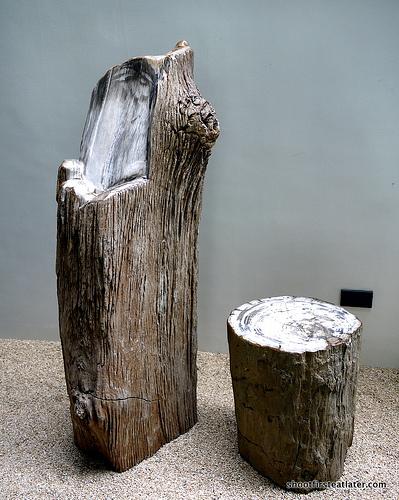 Bencab Museum-26