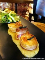 Canadian scallops wrapped in pancetta on apple puree, black fermented garlic & hazlenut salad A$18