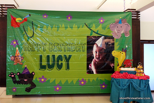 Lucy's 1st birthday at Green Meadows Clubhouse-7