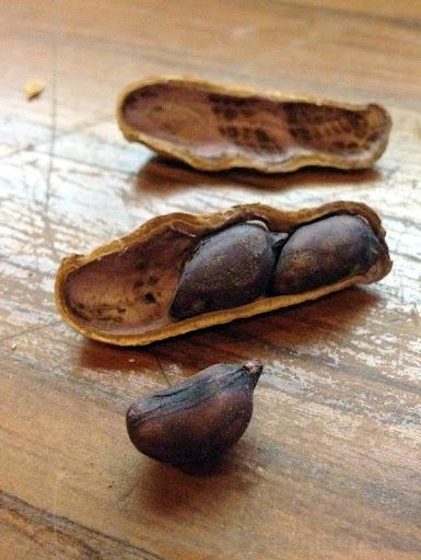 food products from Taiwan - black peanuts-002