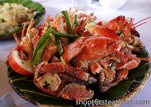 Coconut Crab and Lobster