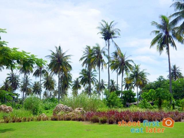 Balesin Island Club landscaping