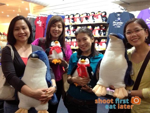 Phillip Island Penguin Parade-005