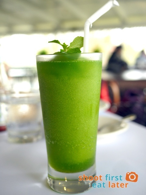 Frozen Granny Smith Mojito P285