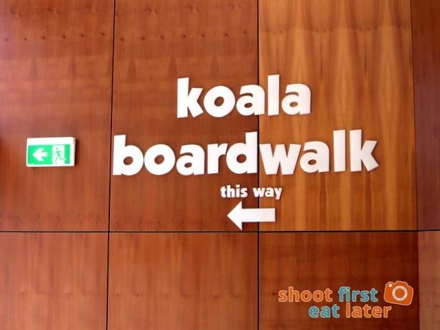 the Koala Conservation -006